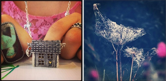 My fine silver Swedish house necklace, and Swedish autumn flower skeletons.